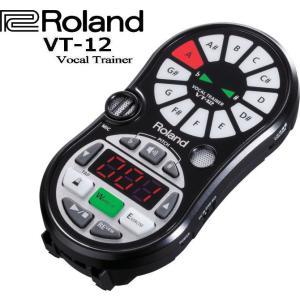 Roland VT-12 Vocal Trainer ローランド ボーカルトレーナー|g-sakai