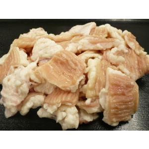激安!! US産牛の脂付 しま腸 500g|g-sumiyoshi