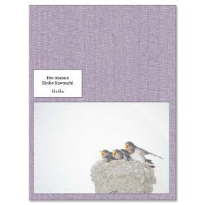 【サイン入】Des oiseaux 川内倫子写真集|銀座 蔦屋書店