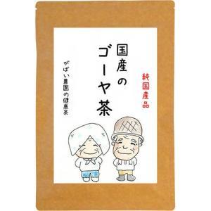 ゴーヤ茶 2g×30包 国産(長野県産) 残留農薬・放射能検査済