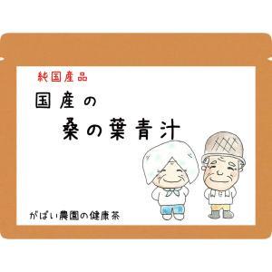 桑の葉青汁 100g 無農薬 国産(徳島県産) 残留農薬・放射能検査済