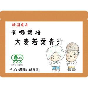 有機栽培 大麦若葉青汁 100g 無農薬 国産(大分産) 残留農薬・放射能検査済