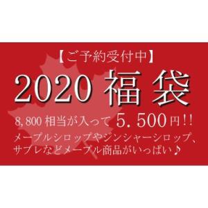 2019 GAGNON福袋 |gagnon-maple