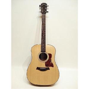 Taylor/Acoustic 110