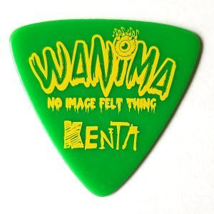 ESP ピック KENTA (WANIMA) PA-WK10-2 / GR アーティストピック|gakki-mori