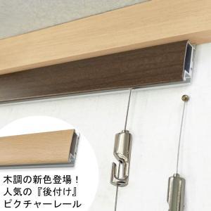 後付ピクチャーレール専用 ボール式ミニワイヤー・1.5m/WR-4