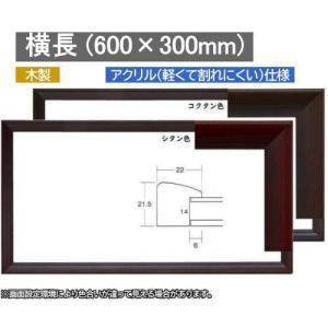 5899 (600×300mm) 60×30 横長額 ワイド額 水彩額 水彩額縁 デッサン額 デッサン額縁
