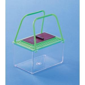 飼育箱A型 サイズ:14.0×9.0×7.5cm 約0.9リットル /理科 観察 小学校 自由研究