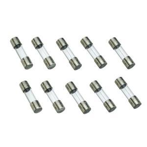 ガラス管ヒューズ10A (125V)  個数:10個 大きさφ6.4×30mm|gakurin