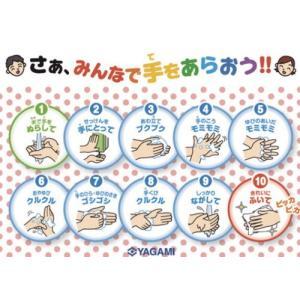 手洗い指導ミニポスター 10 枚組 gakurin
