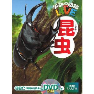 昆虫|gakusan