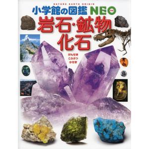 小学館の図鑑 NEO(ネオ) 岩石・鉱物・化石  ISBN10:4-09-217218-4 ISBN...