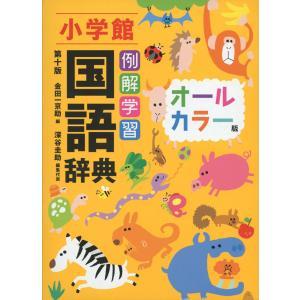 小学館 例解学習 国語辞典 第十版 オールカラー版