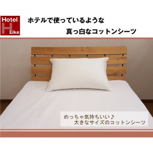 WD230 大きなサイズのコットンシーツ 綿100% フラットシーツ ワイドダブル (230×300cm) 平織シーツ|galette-des-rois2