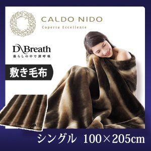 CALDO NIDO notte (カルドニード・ノッテ) 敷き毛布 シングルサイズ 100×205cm あったか毛布カルドニード 快眠博士 galette-des-rois