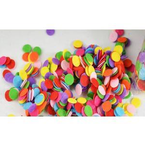 1821(丸型フェルト/200枚以上セット)約10mm 硬質 カラー フェルト【1枚あたり0.5円弱】※色はお任せ下さい※【薄手/工作/ワッペン/フエルト/手芸/パーツ】 |gamagutinoyumemall
