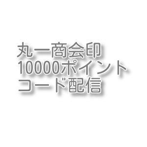 丸一商会印10000 クリックポスト配送 土日対応