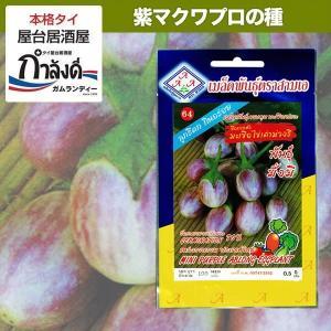 タイでもちょっと珍しい紫のマクアプロ。グリーンカレーをはじめとするタイのカレー「ゲーン」にはなくては...