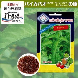 バイカパオ(ガパオ・ホーリーバジル・トゥルシー)の種の商品画像