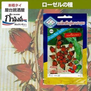 ローゼル種子(ハイビスカス・ハイビスカスティーに)タイ産