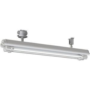 岩崎 防爆形直管LED照明器具32×2定格出力形相当 直付形 電線管径φ22 1台【別途運賃必要なためご連絡いたします。】|ganbariya-shop