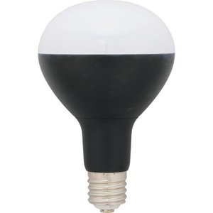 アイリスオーヤマ(株) IRIS 投光器用交換電球3000lm LDR26DHE39BK30 1個【859-5248】|ganbariya-shop