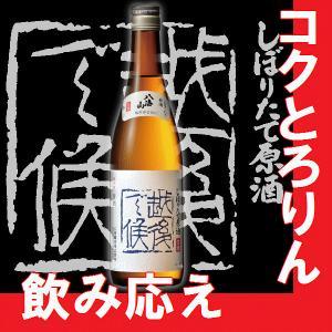 日本酒八海山しぼりたて原酒 越後で候青ラベル(青越後)720ml2017年版 【K】【W】【B】【M】|gancho