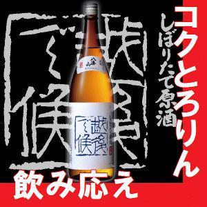 日本酒八海山しぼりたて原酒 越後で候 青ラベル 1.8l 2017年版(K)(W)(B)(M)|gancho
