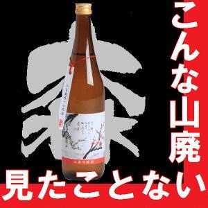 日本酒 春の光 山廃吟醸 720ml|gancho