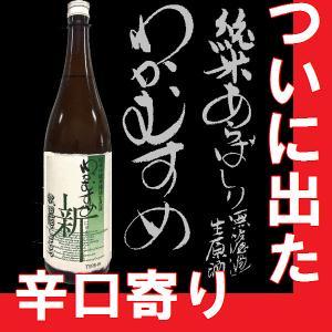 純米吟醸 わかむすめ 新(にゅう) TYPE-19 1.8l 6本以上で送料無料【N】【M】|gancho