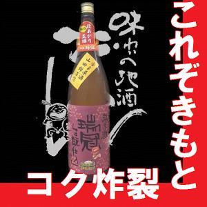 瑞冠(ずいかん)きもと純米生原酒 1.8l (広島県地酒)(K)(B) gancho