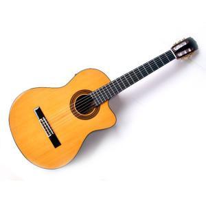 鳴りがよく弾きやすい、アリアのクラッシックギターシリーズ。これからクラシックギターを始める人から上級...