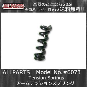 ALLPARTS BP-2230-000/6074 Tension Springsアームテンションスプリング|gandgmusichotline