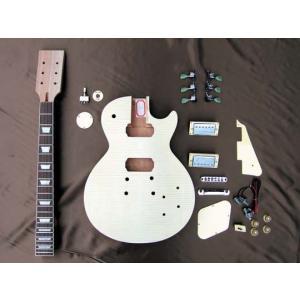 HOSCO エレキギターキット LPタイプ ER-KIT-LP ※ラッピング承ります※|gandgmusichotline