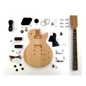 HOSCO エレキギターキット LPスペシャルタイプ ER-KIT-SLP ※ラッピング承ります※|gandgmusichotline