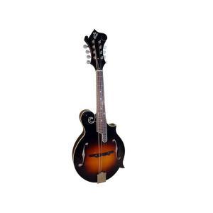 Loar Mandolin LM-520-VS|gandgmusichotline