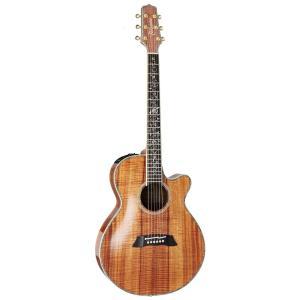 TAKAMINE/タカミネ DMP100K N レギュラーモデル DMP-100K エレクトリックアコースティックギター/エレアコ|gandgmusichotline