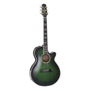 TAKAMINE/タカミネ TDP181AC SGS レギュラーモデル TDP-181AC エレクトリックアコースティックギター/エレアコ|gandgmusichotline