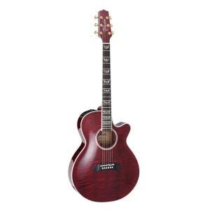 TAKAMINE/タカミネ TDP181AC WR レギュラーモデル TDP-181AC エレクトリックアコースティックギター/エレアコ|gandgmusichotline