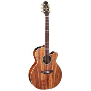 TAKAMINE/タカミネ TDP531KC N レギュラーモデル TDP-531KC エレクトリックアコースティックギター/エレアコ|gandgmusichotline