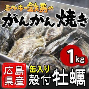 /送料無料!/ミルキー鉄男のがんがん焼き 広島県産殻付きかき 缶入り1kg|gangan