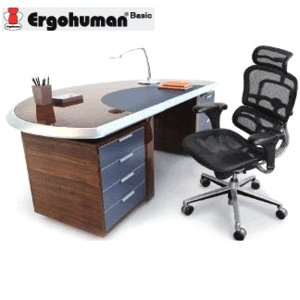 EH-HAM メッシュ ブラックのみ  オフィス チェア メッシュ ブラック パソコンチェア  エルゴベーシック Ergohuman|garage-murabi