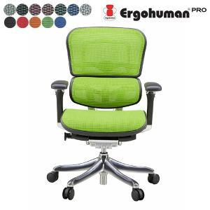 EHP-LAM エルゴヒューマン プロ 法人後払いも  腰痛対策 事務椅子オフィスチェア 通販 ローバック|garage-murabi