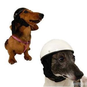 アニマルヘルメット スモール(小型犬・猫向き) 犬用ヘルメット|garager30
