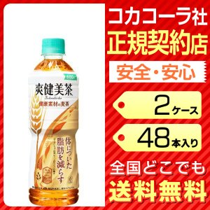 爽健美茶 健康素材の麦茶 トクホ 600ml 48本 2ケース 送料無料 ペットボトル cola