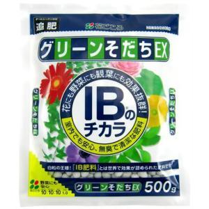 花ごころ いよいよ人気ブランド IBのチカラグリーンそだちEX 500g 販売期間 限定のお得なタイムセール