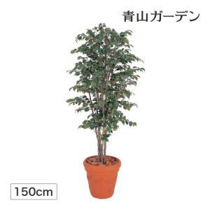 人工植物 造花/ベンジャミンナチュラル 1.5m /GD-31S/フェイクグリーン/ディスプレイ/飾り garden