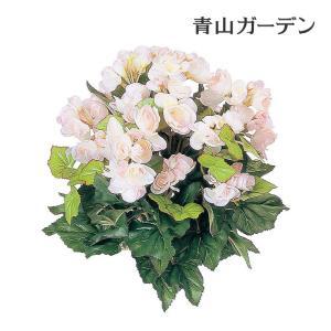 人工植物 造花/ベゴニア ピンク/GN-34P/フェイクグリーン/ディスプレイ/飾り|garden