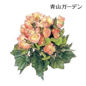 人工植物 造花/ベゴニア オレンジ/GN-34Y/フェイクグリーン/ディスプレイ/飾り|garden