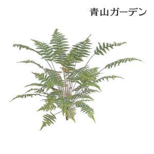 人工植物 造花/ベニシダ 小/GN-41S/フェイクグリーン/ディスプレイ/飾り|garden